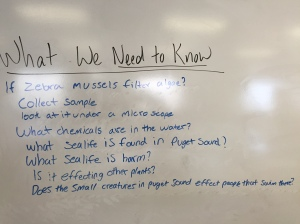 Period 3 - Know