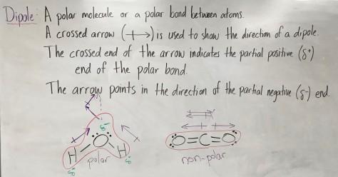 Lesson 43 Picture 2