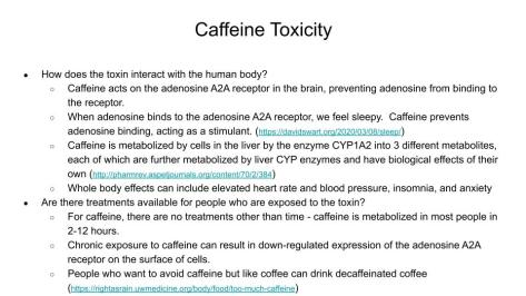 Toxin Research Project - Slide 2 Example